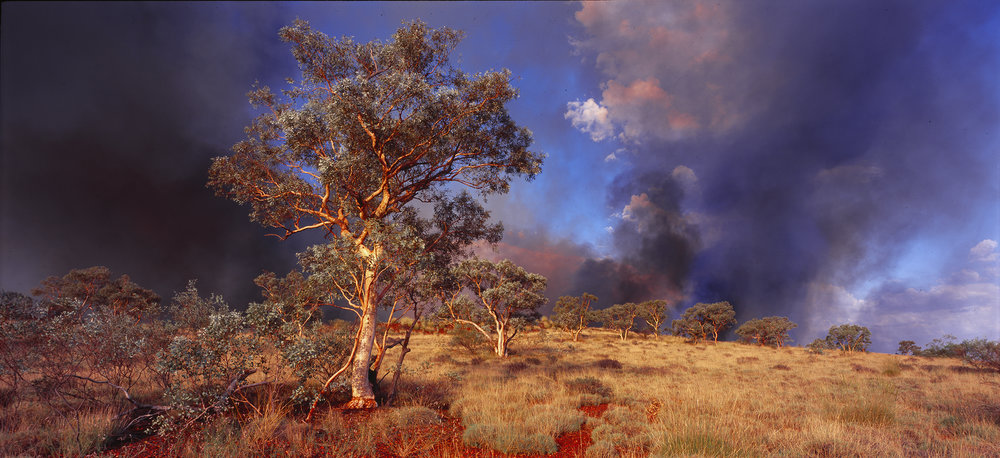 Spinifex Fire, Newman, Western Australia, 2013.