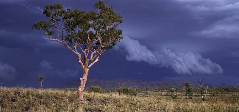 Summer Storm Squall, Near Mt Farquhar, Hamersley Range, Western Australia, 2015. Edition of 3.