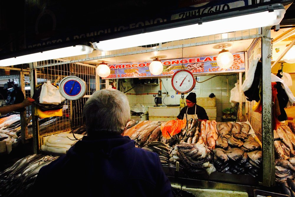 Chile: Santiago fish markets