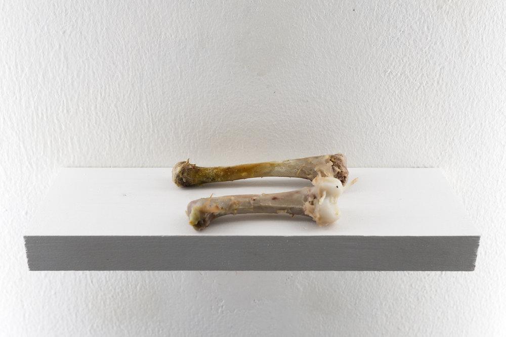 Gregory Hari rising of poult Substrat Projektraum Bern Offspace Art Berne