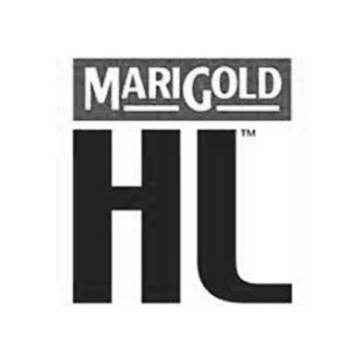 HL-1.jpg