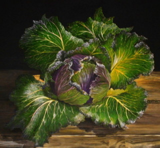 jane robinson - website cabbage.JPG