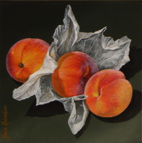 jane robinson - website peach.jpg