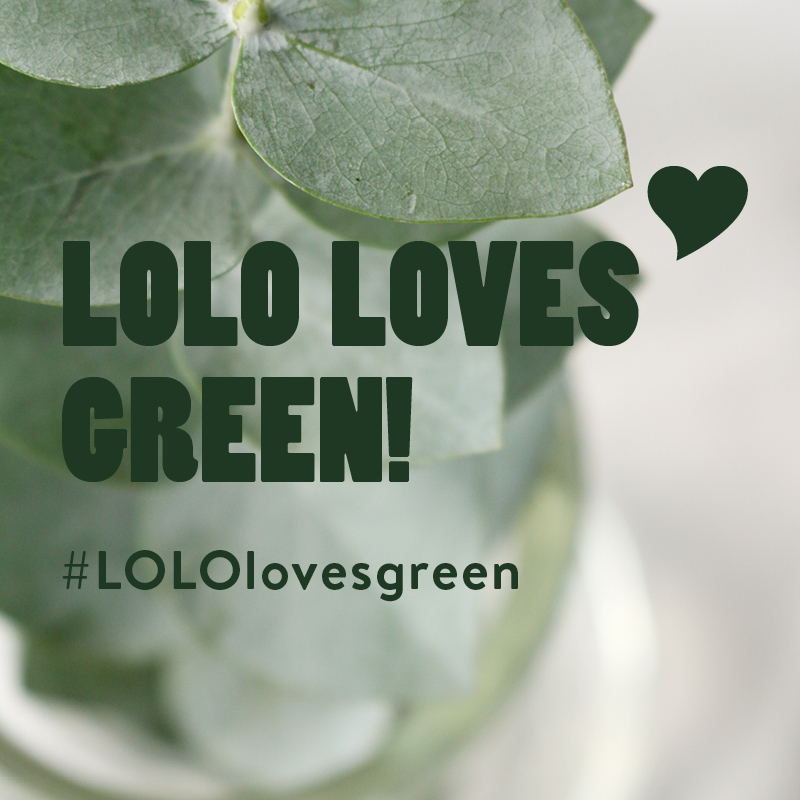 Lolo loves green.jpg
