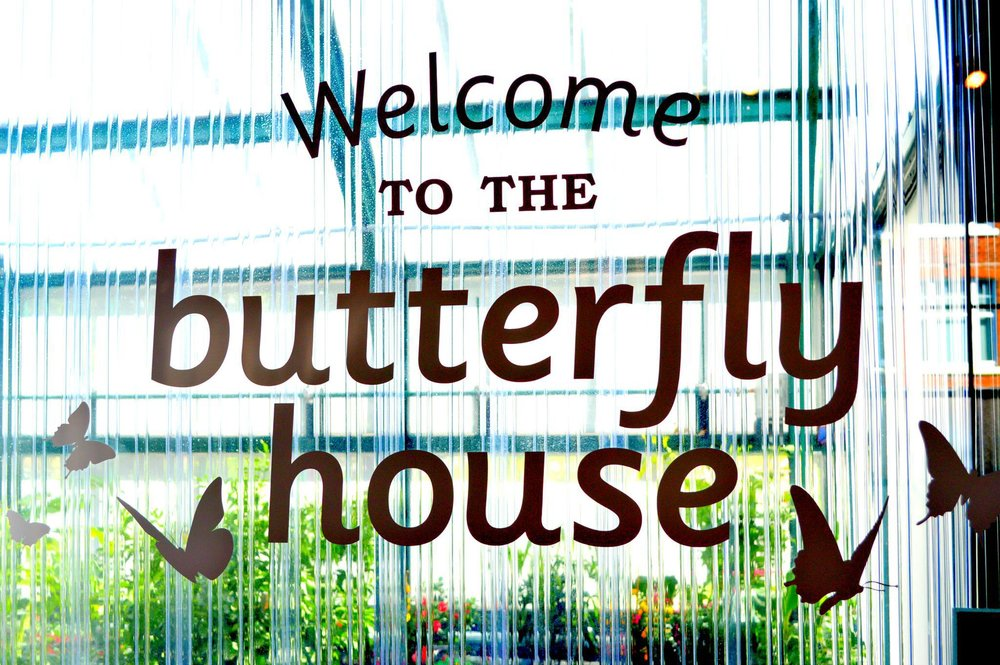 butterfly house southsea.jpg