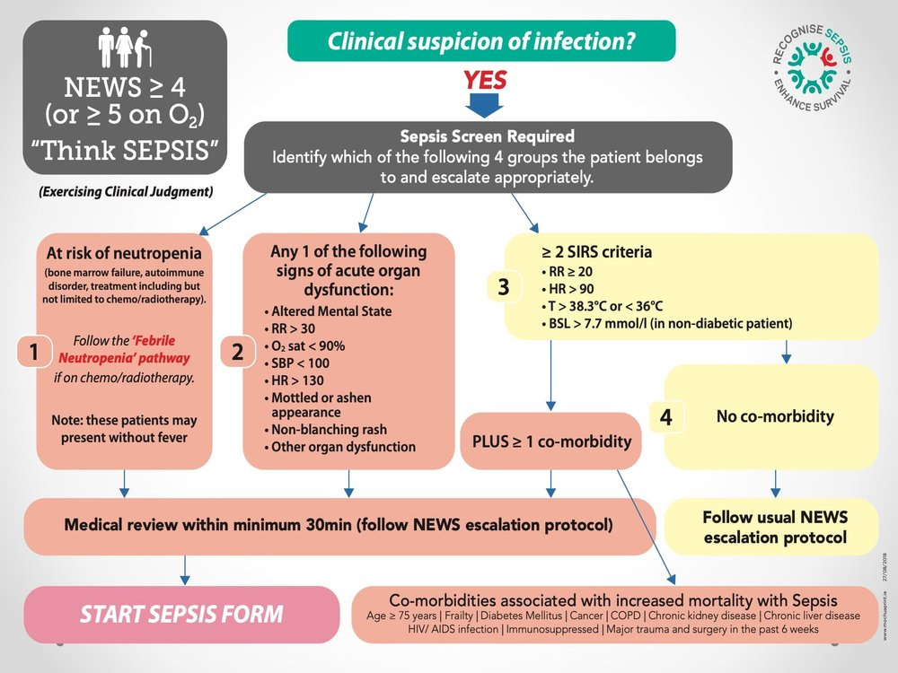 The National Sepsis Plan in Ireland4.jpeg