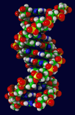 dna-chain.png