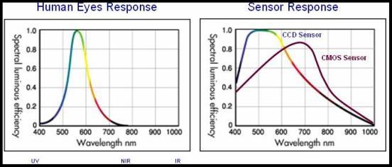 Human eye vs camera response