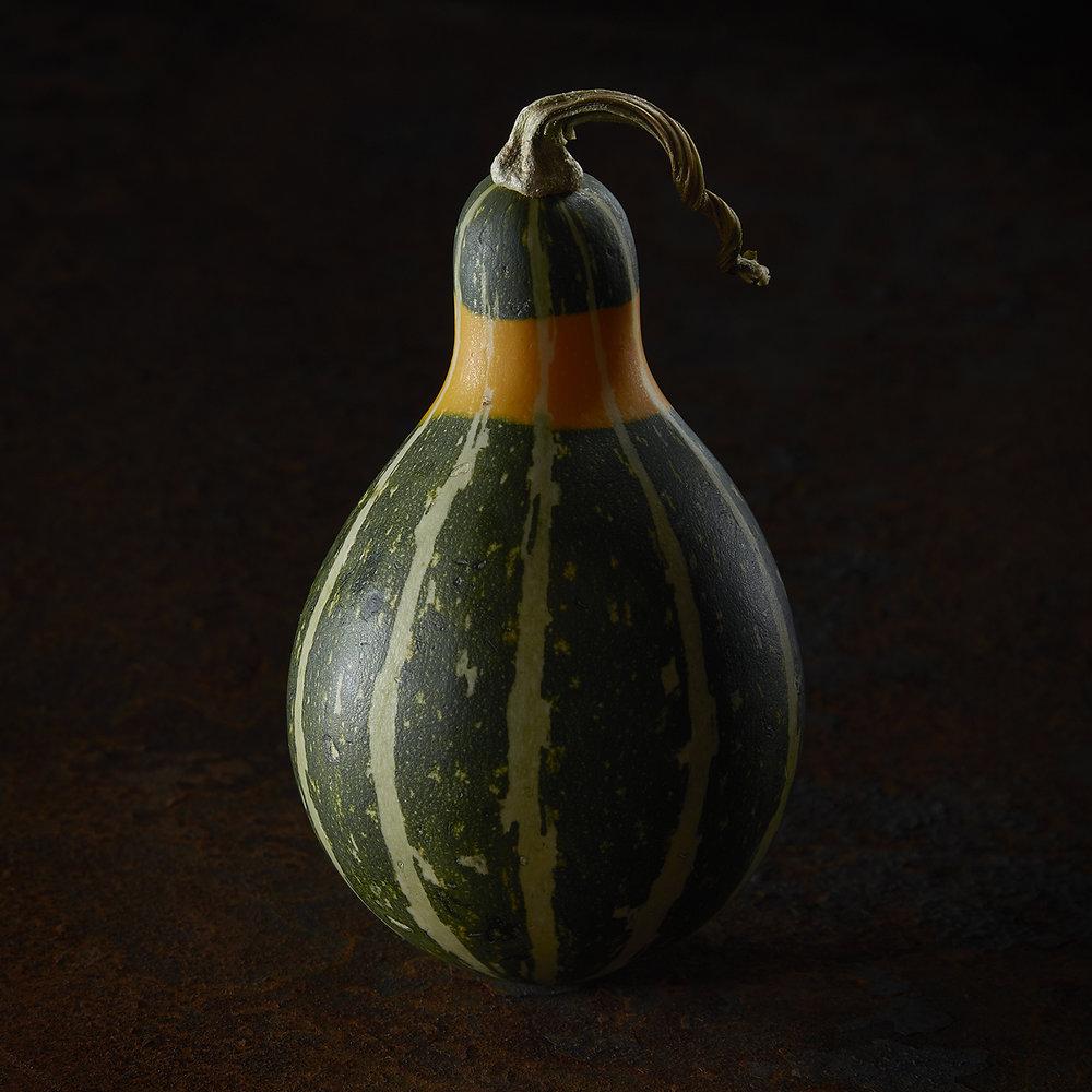 GourdPortrait-10.jpg