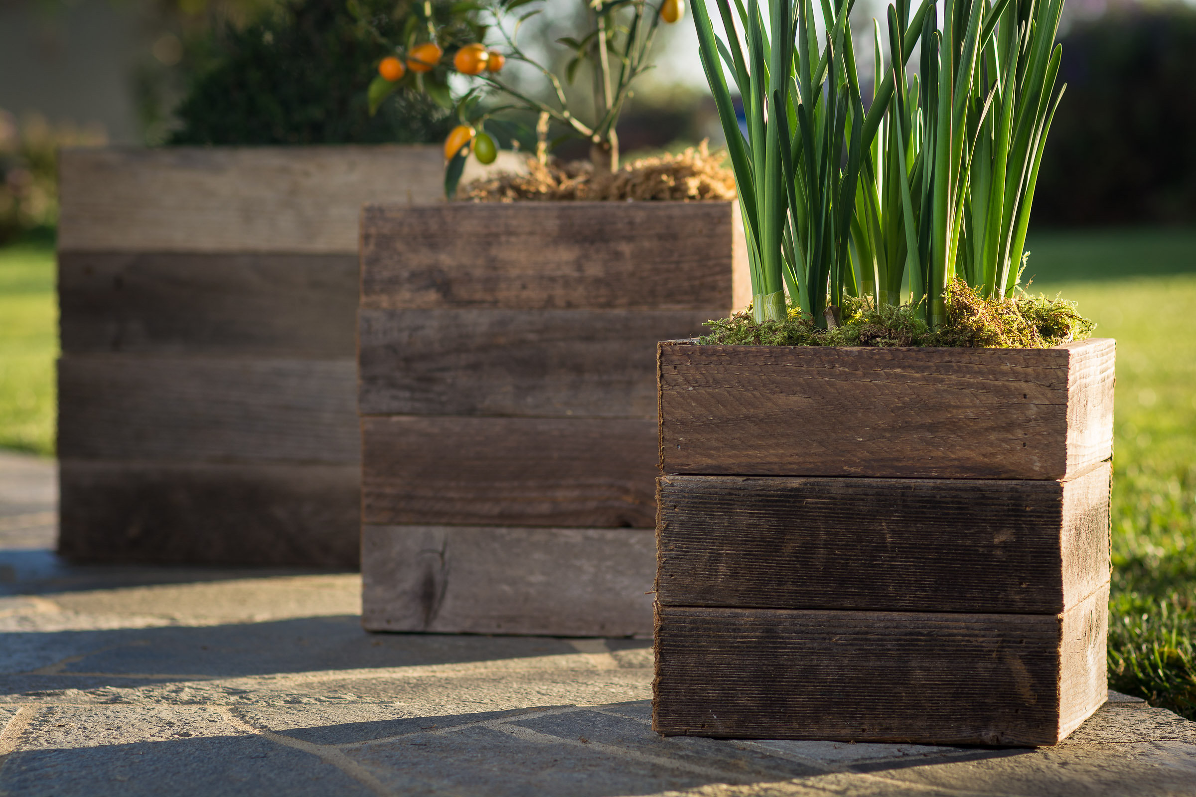 Reclaimed Standard Patio Planters — Pacific Royal