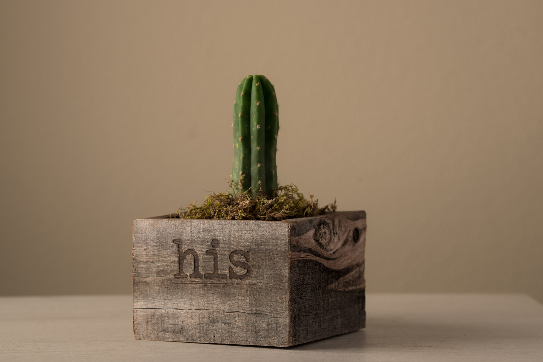 His hers reclaimed succulent set wtray pacific royal all succulent wall decor kokiak reclaimed container reclaimed party succulent tray royal reclaimed wooden planters 12 redwood succulent centerpiece amipublicfo Images
