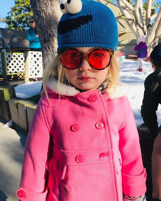 Snow Day at school. Not sure So-Cal Clover is digging it. 🏝🏝