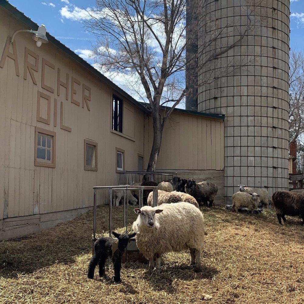 Maplecroft woolworks - Boulder, CO