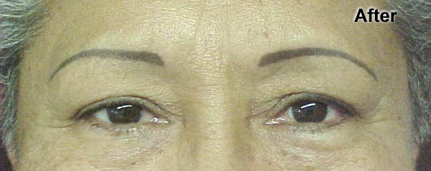 Traditional Permanent Eyebrows (Not My Work)