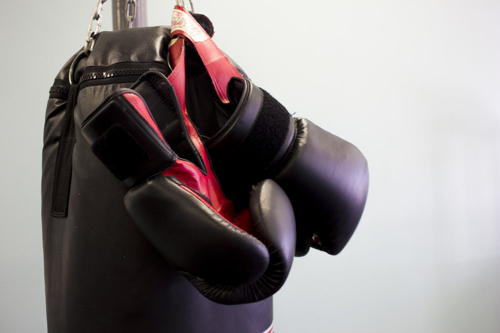 Bag with Gloves 2.JPG