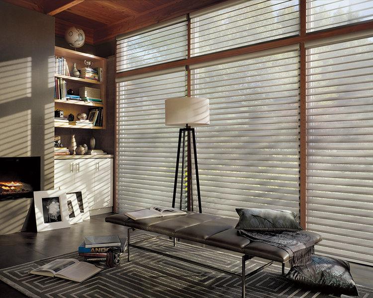 alsilhouette_powerrisetwoone_livingroom.jpg
