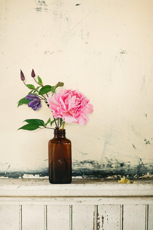 botanical_noir shoot_apryl ann_rent my dust_vintage rental (14).jpg