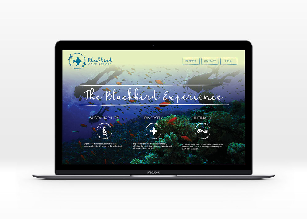 WebsiteMock.jpg