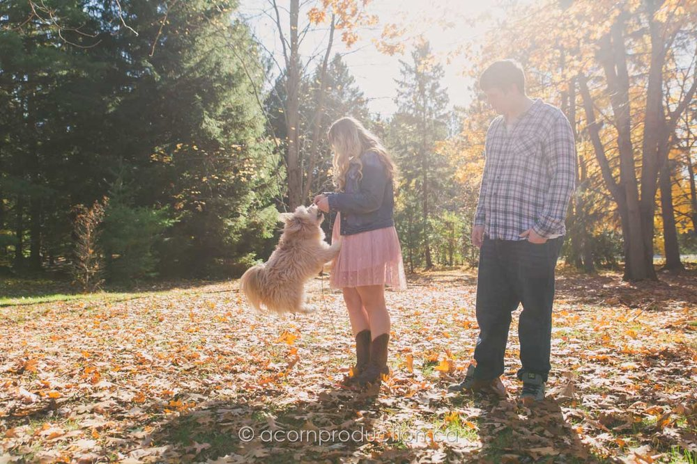 puppy-playing-with-woman-outdoor-fall-orange-leaves