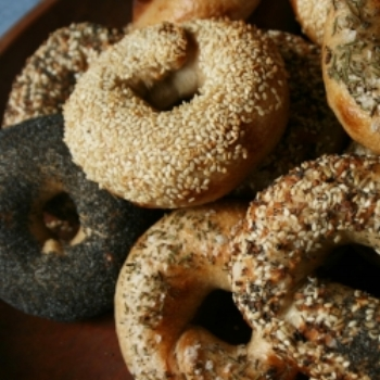 Bagels close Up SQ.jpg
