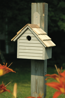 Cape Cod Wren House .png