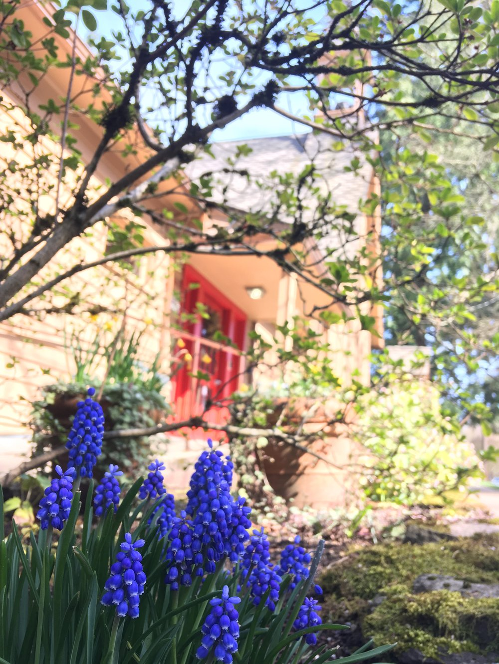 Springtime at our chapel.