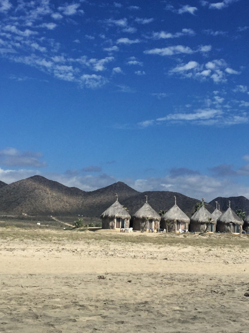 An eco-resort at Playa Los Cerritos