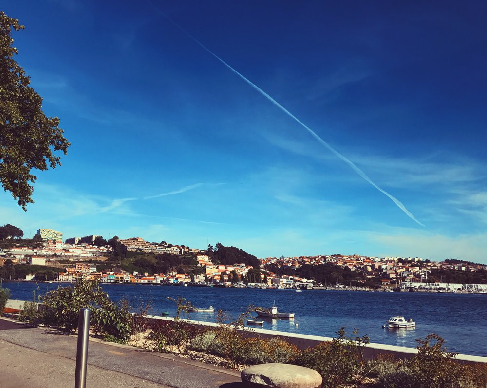 View from Jardim do Calem in Porto