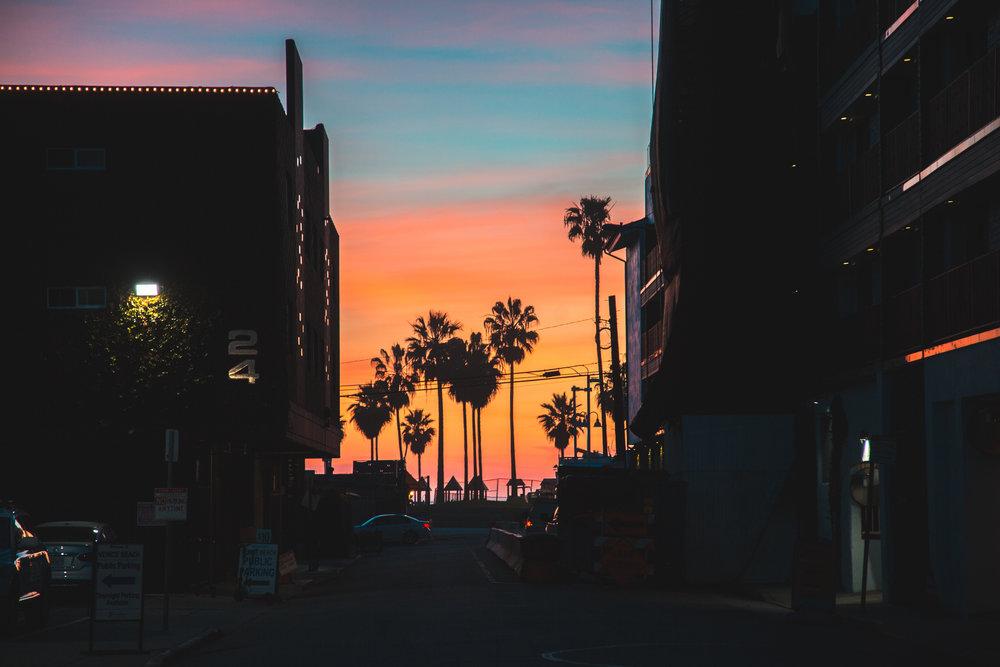Venice Beach 1-10-2018 - Aftr-9922.jpg