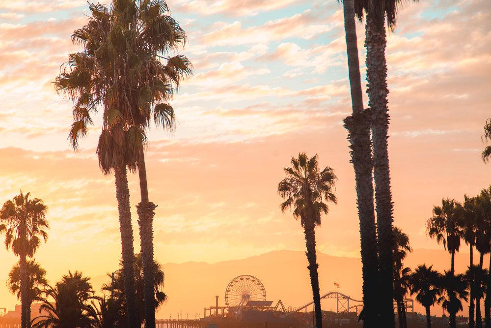 Playa Del Rey 3-4-2018 - After-3263.jpg