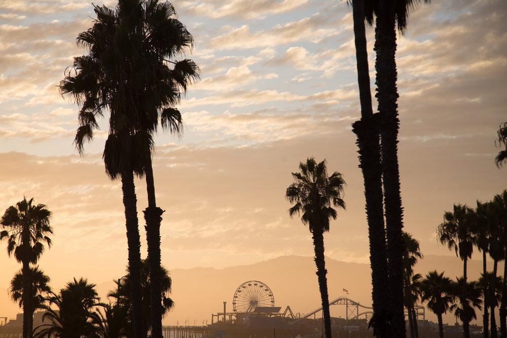 Playa Del Rey 3-4-2018 - Before-3263.jpg