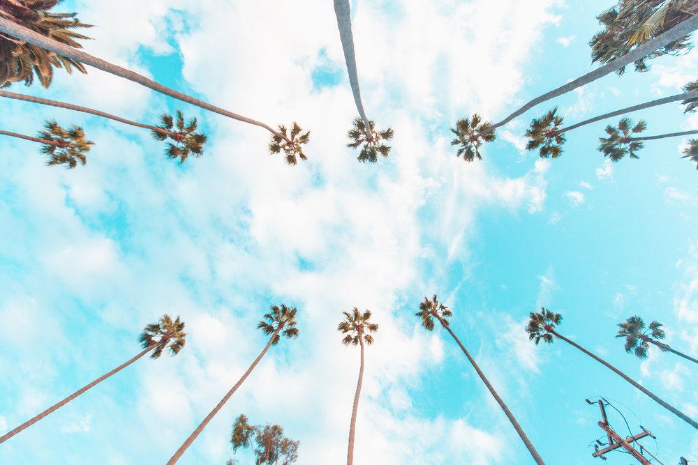 Playa Del Rey 3-4-2018 - After-3187.jpg