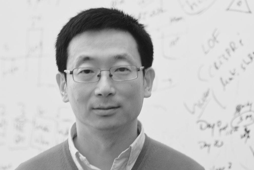 Sheng Ding, Ph.D.