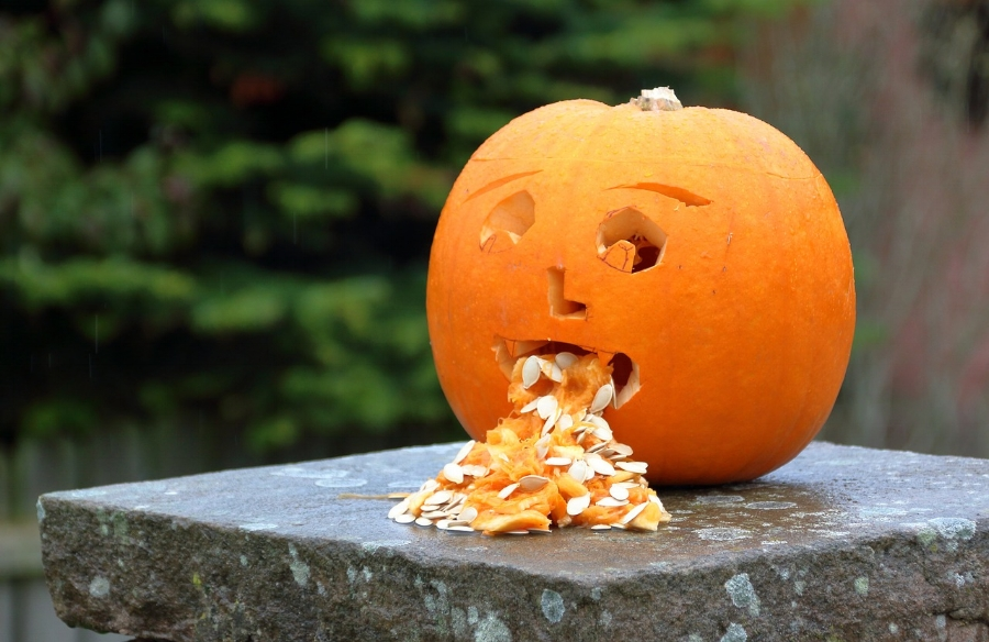 Don't let your smelly house offend the pumpkin.