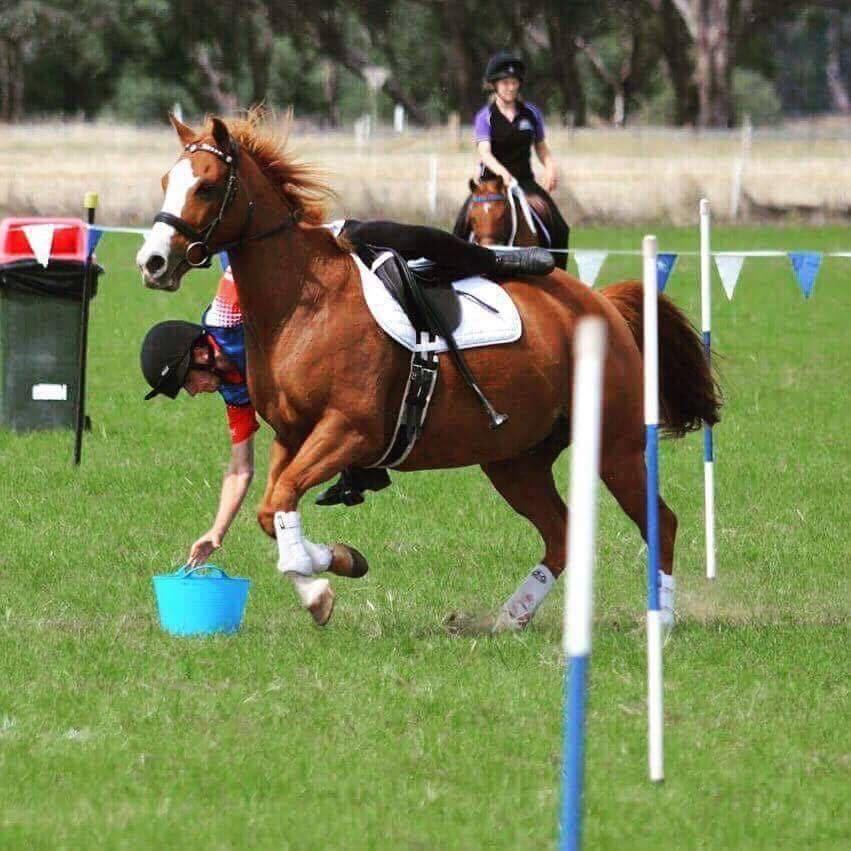 Simon Rodgers   I am 17 years old and am from Melbourne, Victoria. I have been riding horses for 7 years and competing in mounted games that entire time. During those 7 years I have travelled Australia for mounted games competing in many MGA and Pony Club national championships. I have ridden in New Zealand in 2016 and 2017 at the Horse of the Year Show, Ireland at the 2016 U17 World Team Championships and Florida as reserve rider at the 2015 U17 World Team Championships. I finish school this year and next year I am intending on living in England and riding in the MGA season over there, competing at all of the major shows. I look forward to competing with some great riders from around the world at Nations and riding with such great team mates. I am super excited to wear the Green and Gold along side my sister Kate.