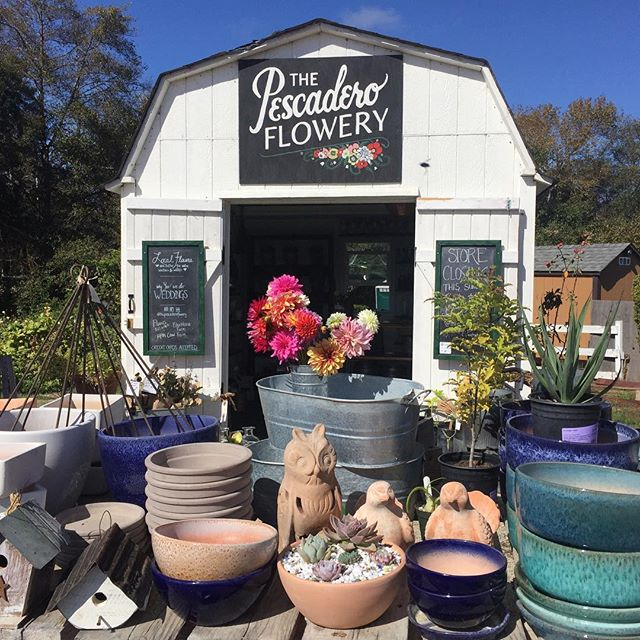 All right people, the Big Sale is upon us. Now until Sunday everything in the shop is 50% off! There are still some gorgeous flowers to pick, and it's going to be a spectacular sunny weekend. Send us off in style! #pescadero #smallshoplove