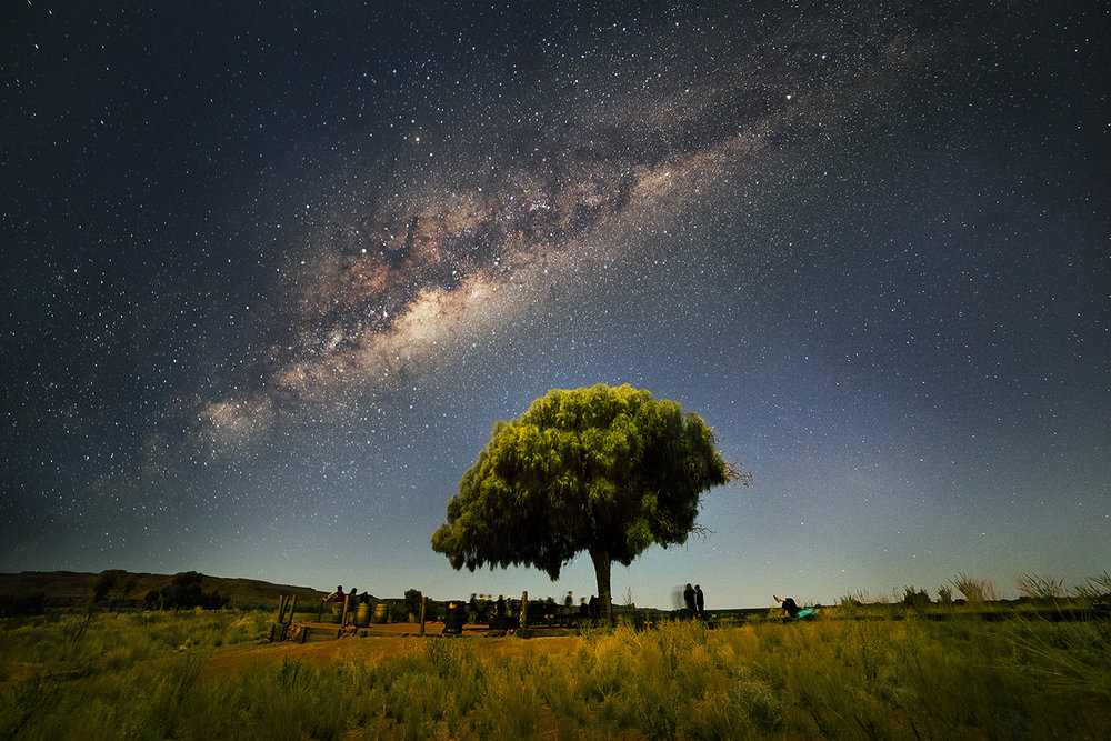 Tree Milky Way.jpg