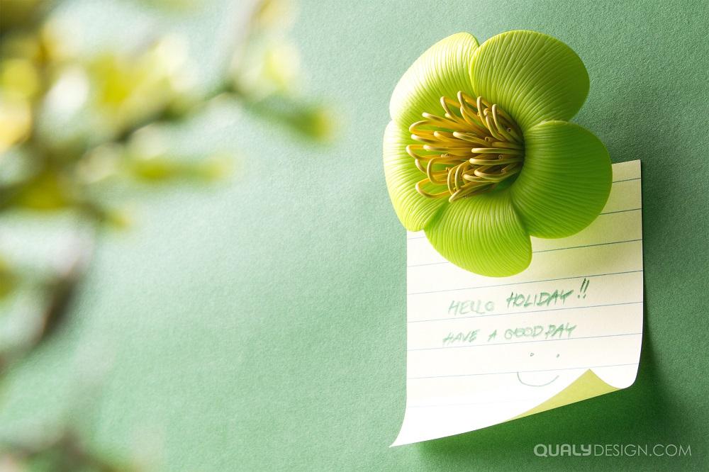 QL10144_Blossom_LF-GN_hi.jpg