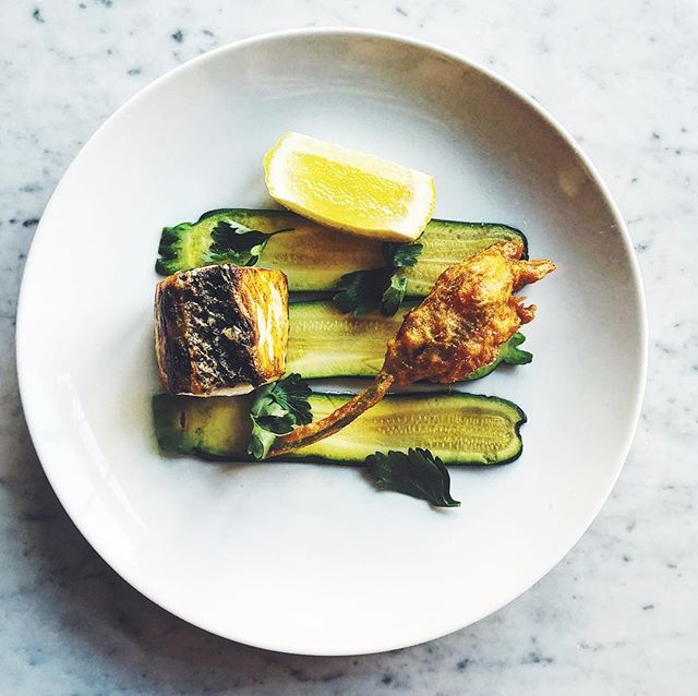 Striped bass / squash blossom / shrimp / zucchini