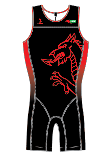 Welsh National Suit Design