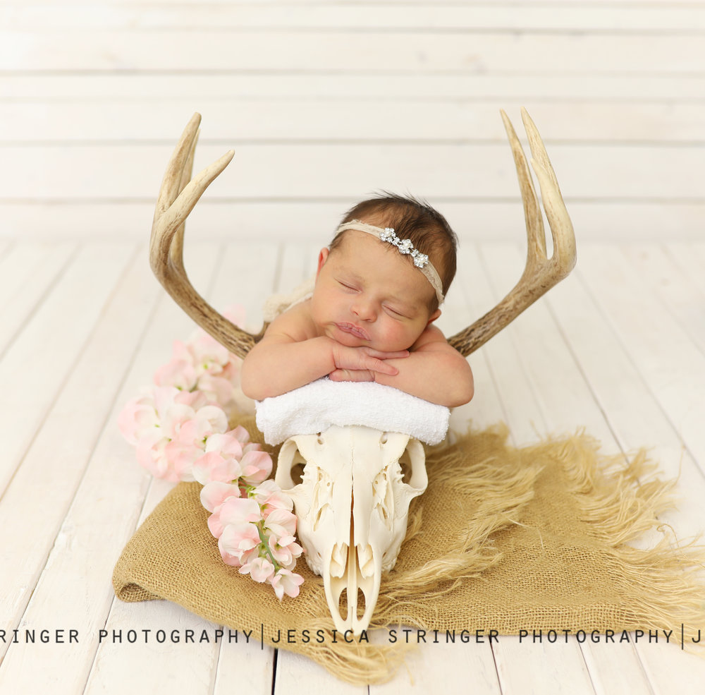 newborn girl photos in rochester ny