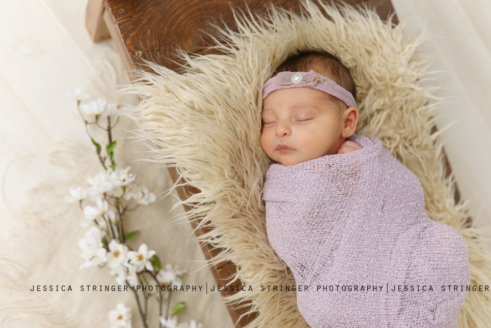 infant photographer rochester ny