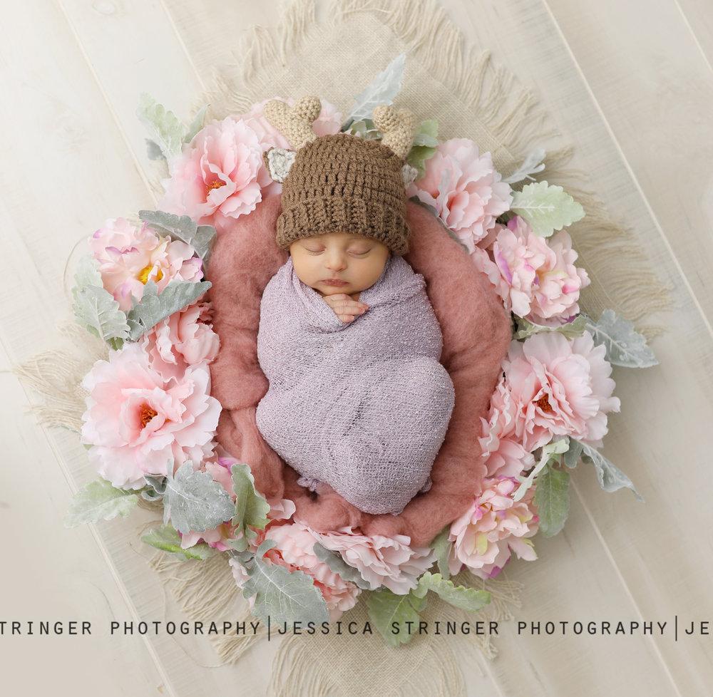 Rochester ny newborn photographers
