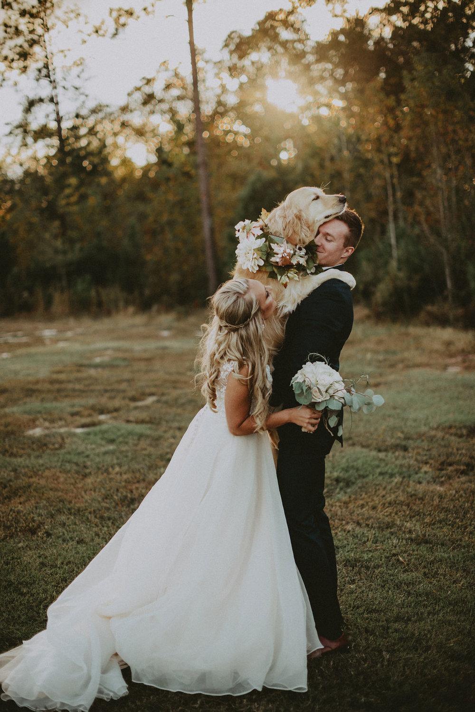 bride + groom with golden retriever