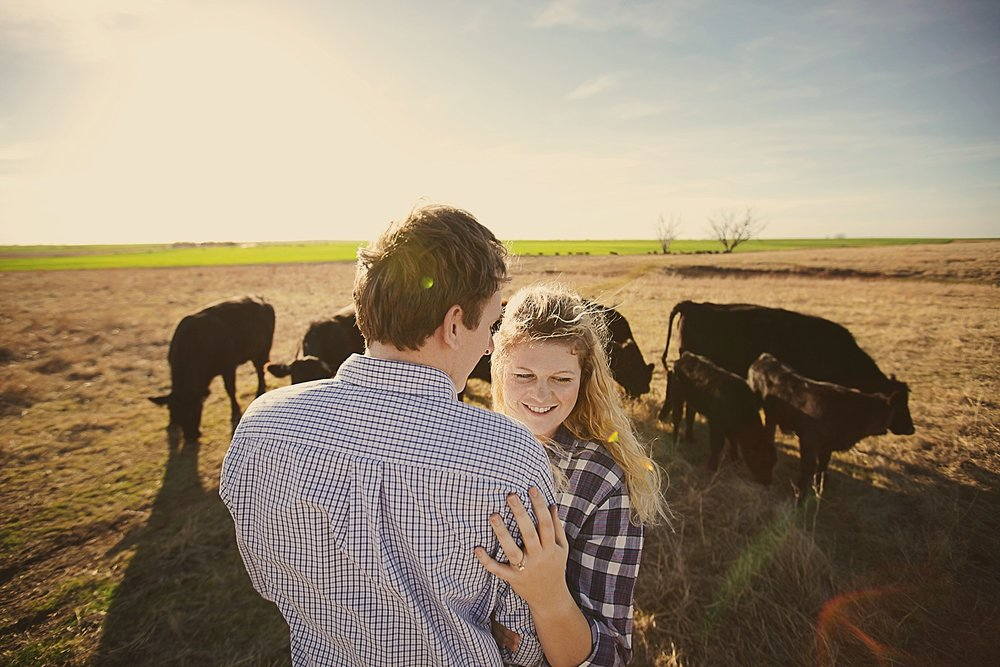 couple feeding cattle, engagements on a farm, western oklahoma engagements, thomas oklahoma wedding photographer, weatherford oklahoma wedding photographer