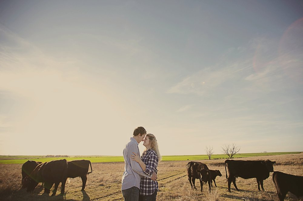 couple in field, western oklahoma engagements, engagements on a farm, thomas oklahoma wedding photographer, weatherford oklahoma wedding photographer