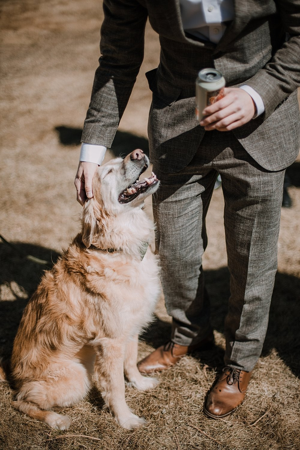 groom and his dog, gateway natural area elopement, seaman reservoir elopement, fort collins colorado elopement, colorado elopement, fort collins wedding photographer, golden retriever