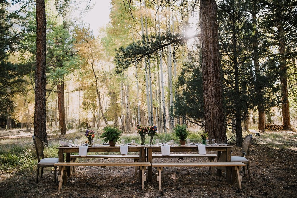 dinner table in the woods, post elopement celebration, wedding in the woods, buena vista elopement, buena vista wedding, nathrop colorado wedding, adventurous colorado elopement
