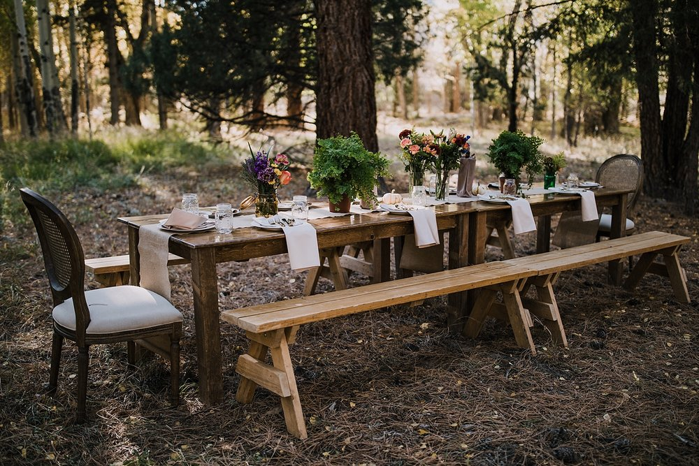 dinner table in the woods, post elopement celebration, wedding in the woods, buena vista elopement, buena vista wedding, nathrop colorado wedding, adventurous colorado elopement, bv farmers market
