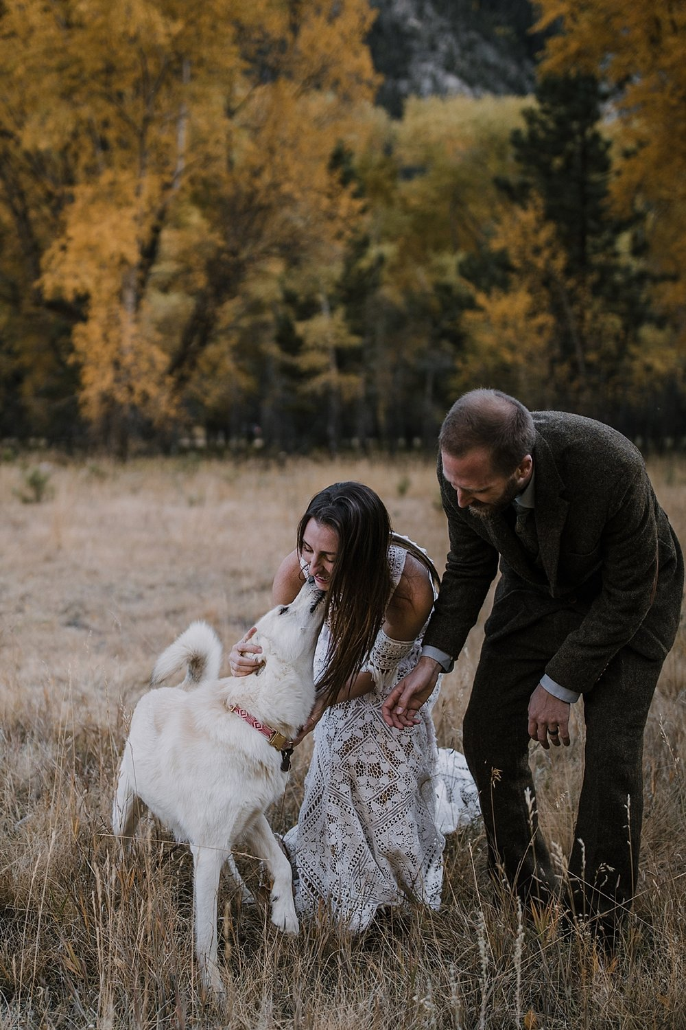 couple eloping, husky pup, couple hiking, norway elopement, post elopement celebration, wedding in the woods, buena vista elopement, buena vista wedding, nathrop colorado wedding, elope with your dog